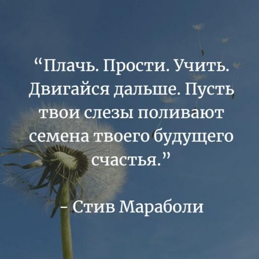 Стив Мараболи цитата