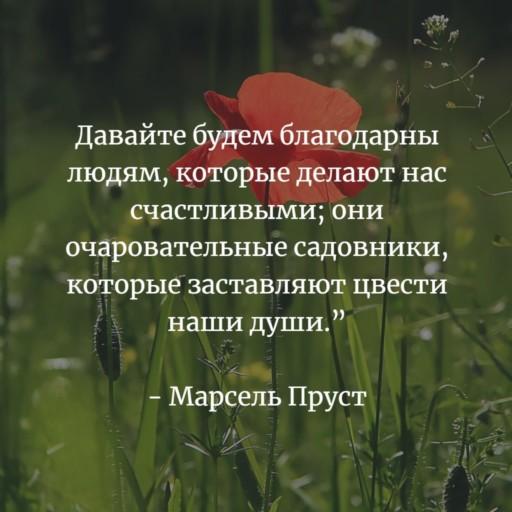 высказывание о счастье великих людей. пруст